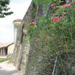 Castello di fraz. Perno a Monforte d'Alba