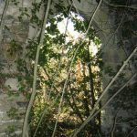 Torre Bormida – Strutture fortificate