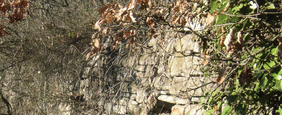 Strutture fortificate di Torre Bormida